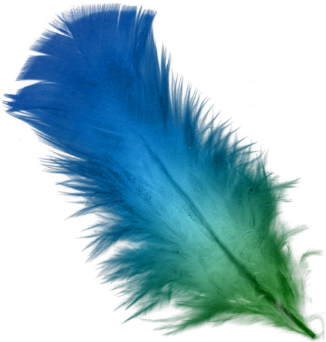 Feather HD PNG - 90468