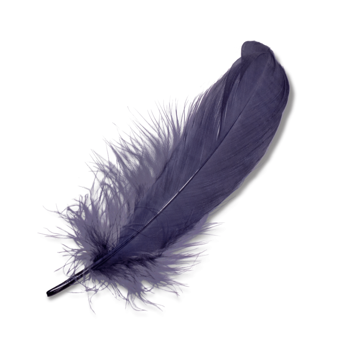 Feather HD PNG - 90467