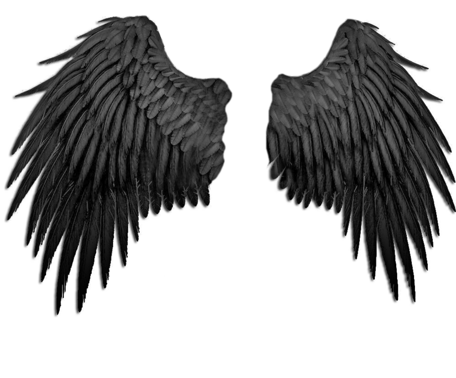 Filename: black_angel_wings_by_marioara08-d3b3rx5.png - Dark Angel PNG