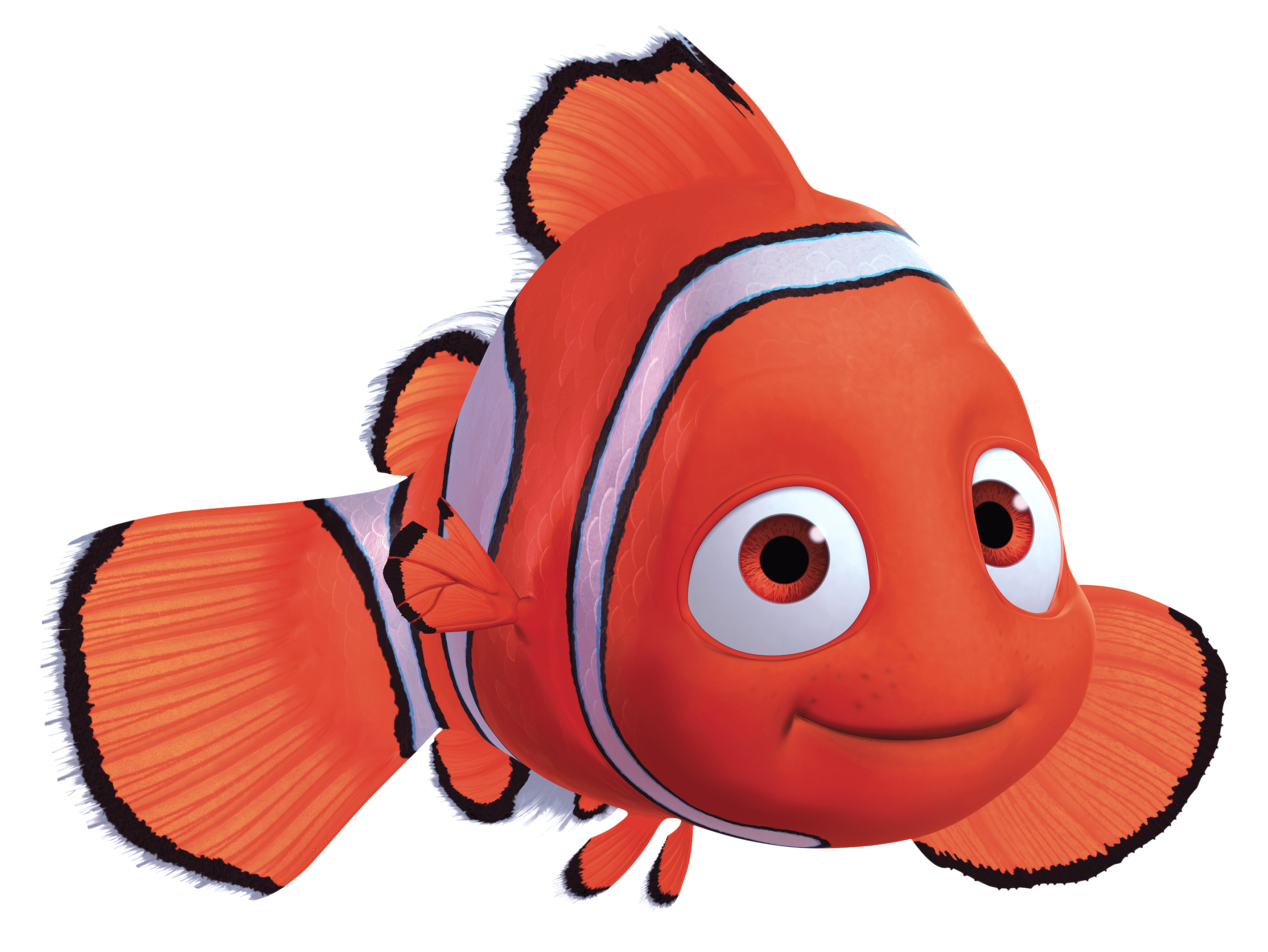 Finding Nemo PNG