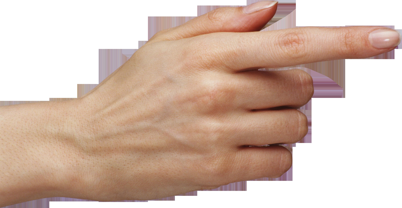Finger PNG image - Fingers PNG