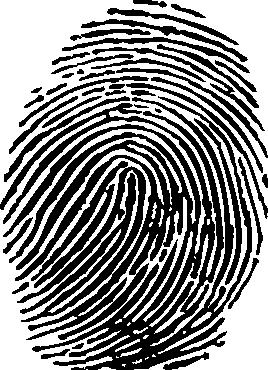 Fingerprint PNG - 11659