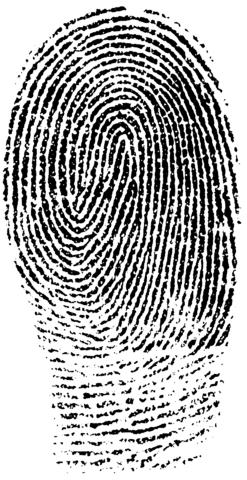 Fingerprint PNG - 11666