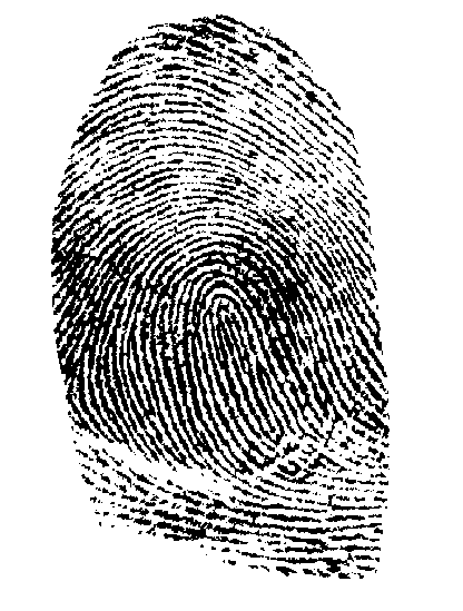 Fingerprint PNG - 11657