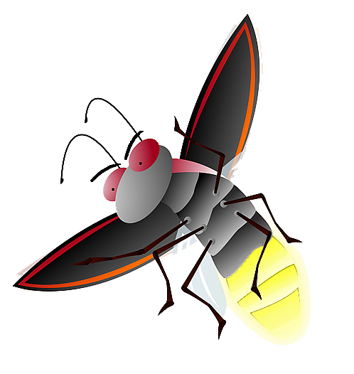Firefly PNG File - Firefly PNG