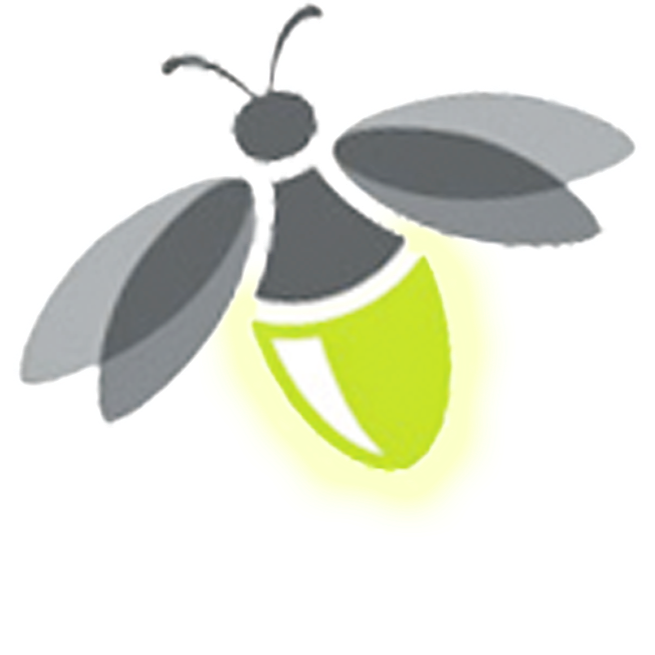 Firefly PNG