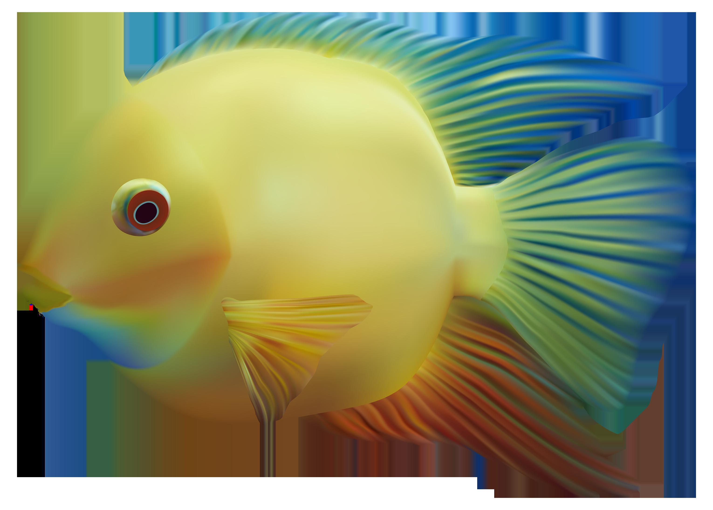 Fish PNG - Fish Gills PNG