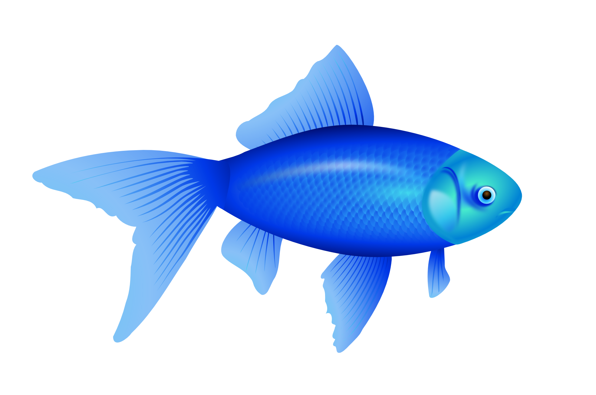 Pin Tropical Fish Clipart Png File #7 - Fish HD PNG