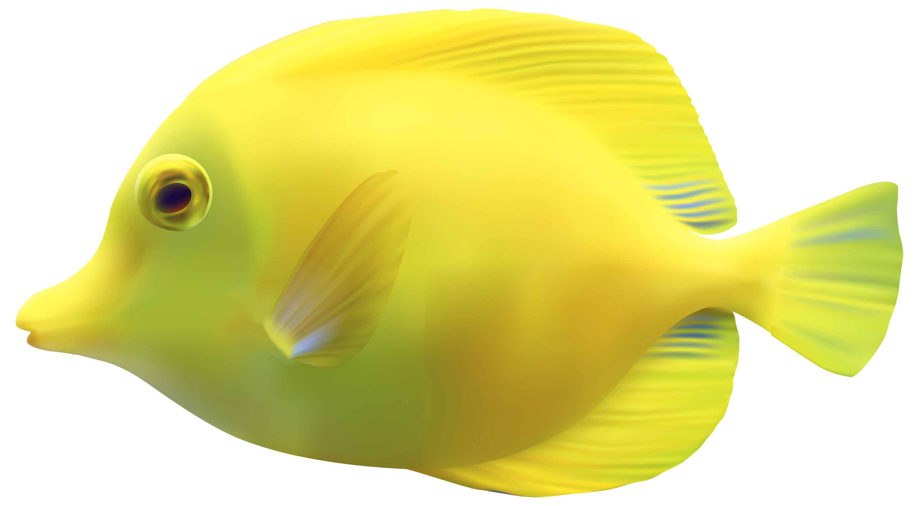 fish png transparent fish png images pluspng clip art goldfish in a bowl clip art goldfish crackers in a bag