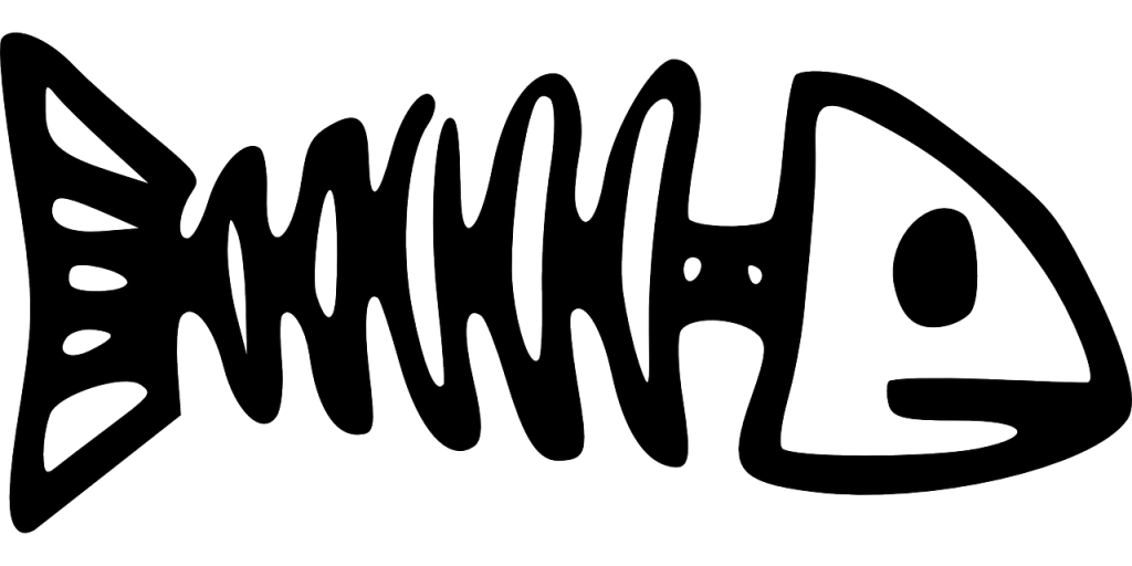 Fishbones - Fishbone PNG HD