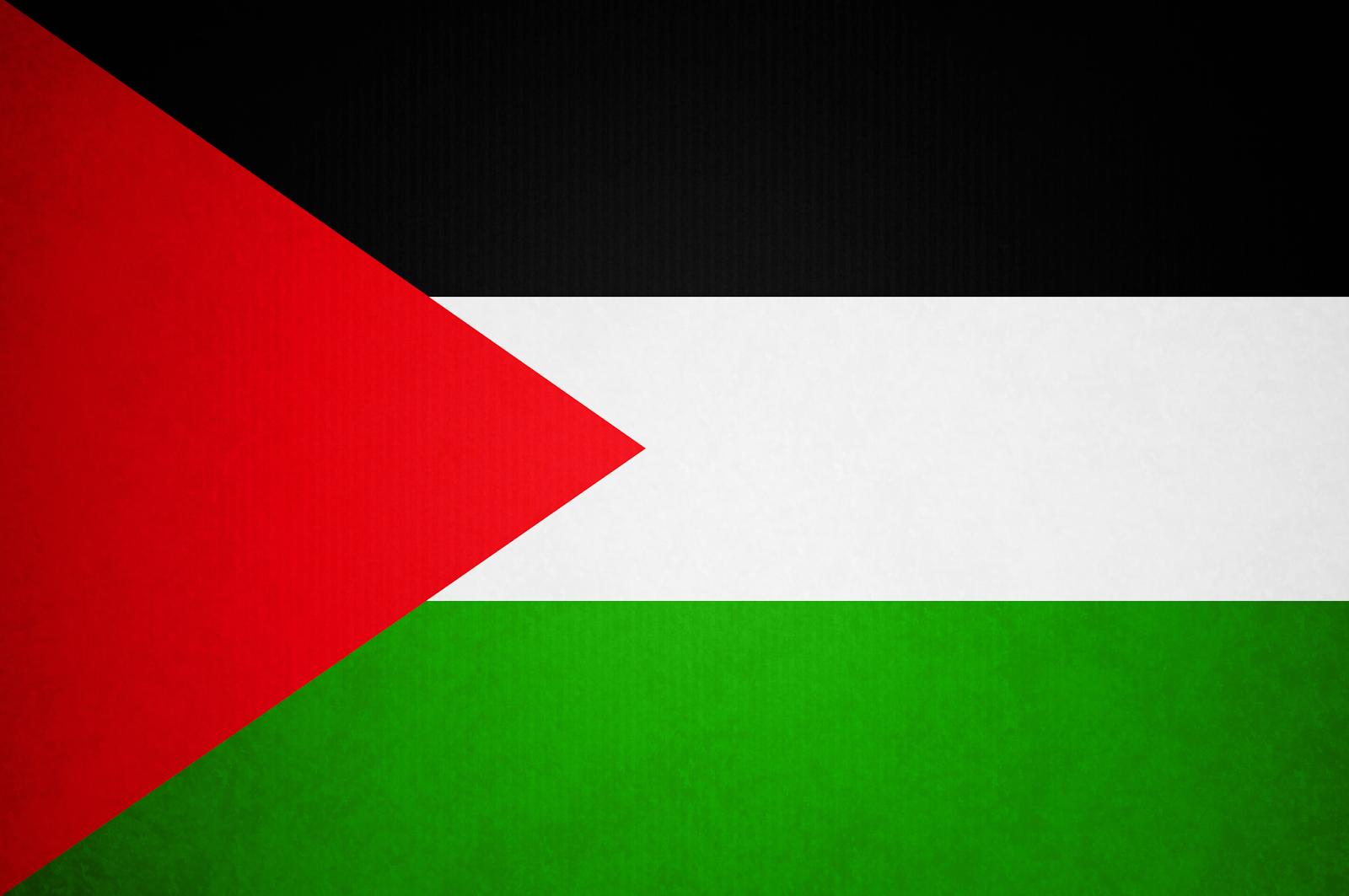 Palestinian Flag Hd Png علم فلسطين - Flag HD PNG