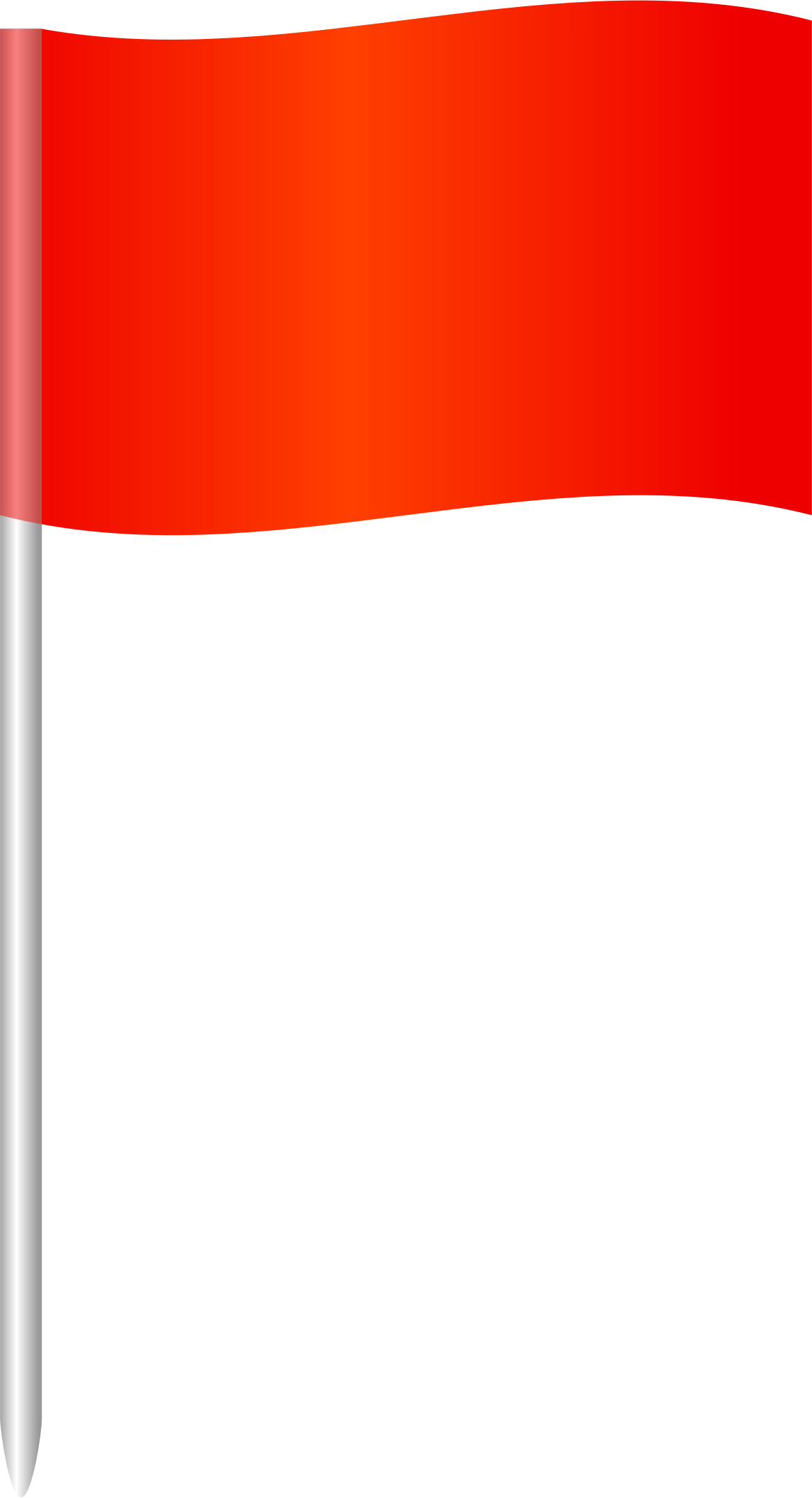 Flag Logo PNG - 100983