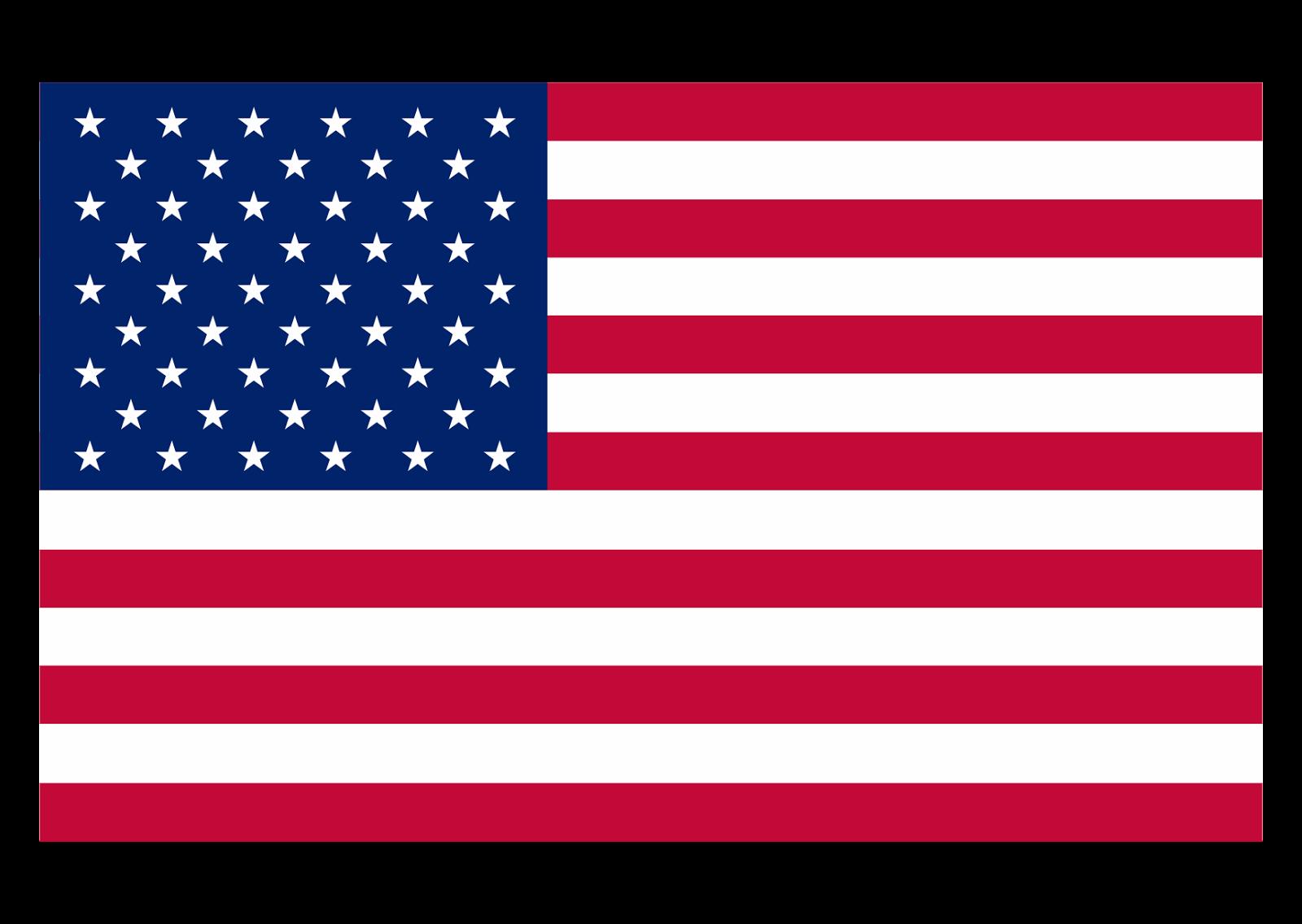 Flag Logo Vector PNG