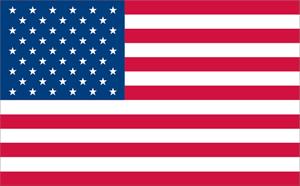 American Flag Logo Vector - Flag Logo Vector PNG