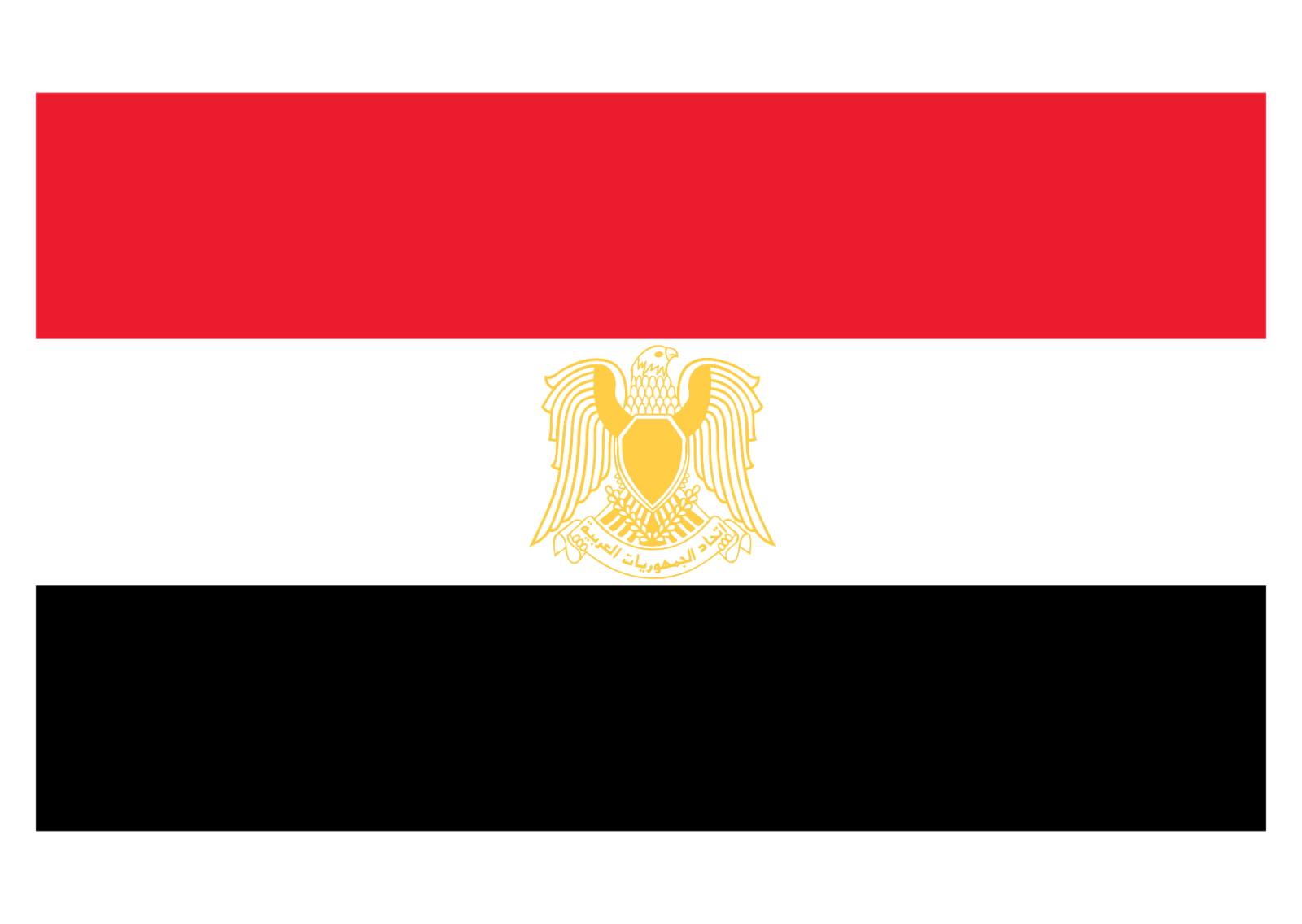 Egypt flag Logo Vector