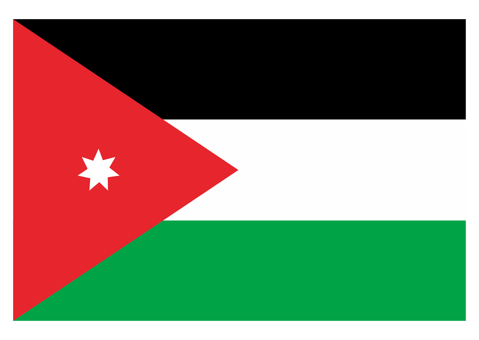 Jordan Flag Logo Vector