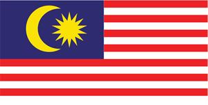 malaysia flag Logo Vector - Flag Logo Vector PNG