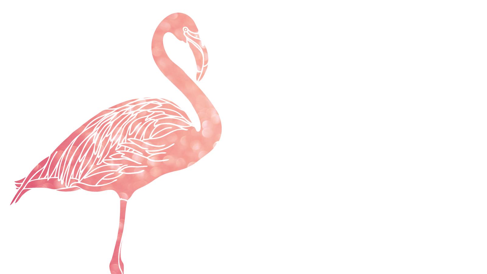 Flamingo HD PNG - 90735