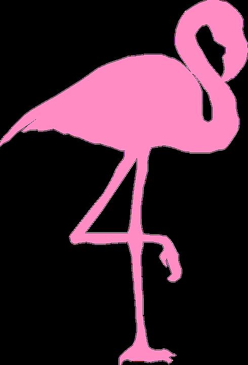 Flamingo HD PNG - 90737