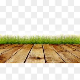 Floor lawn, Meadow, Floor, Floor Lawn PNG and Vector - Floor PNG HD