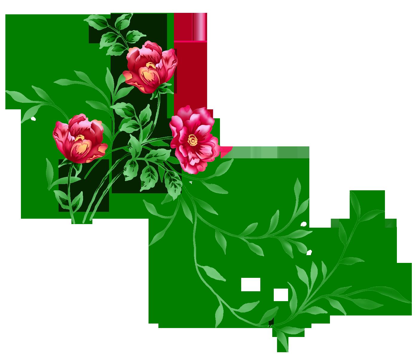 Floral PNG - 14935