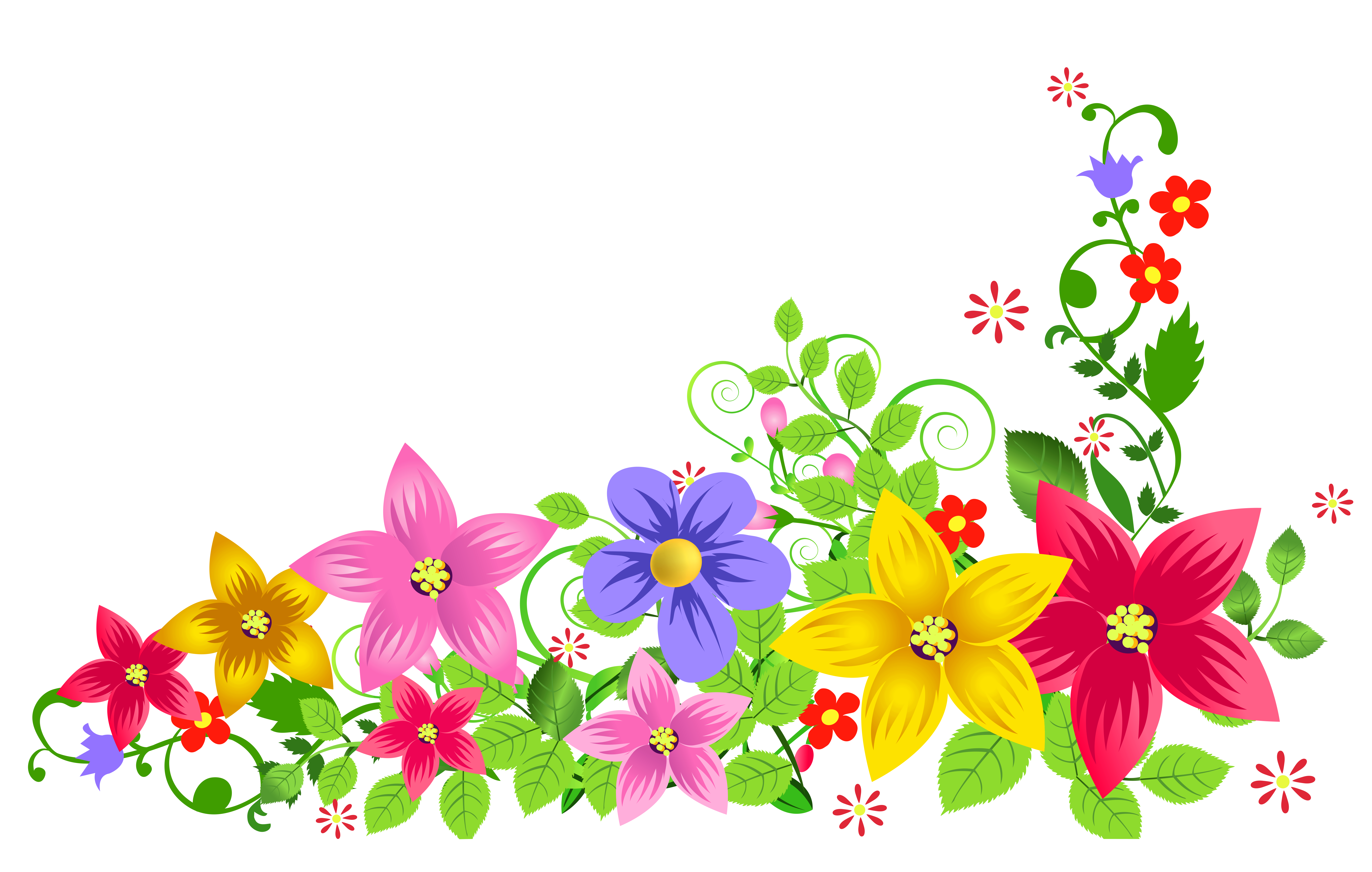 HD flowers of various colors,