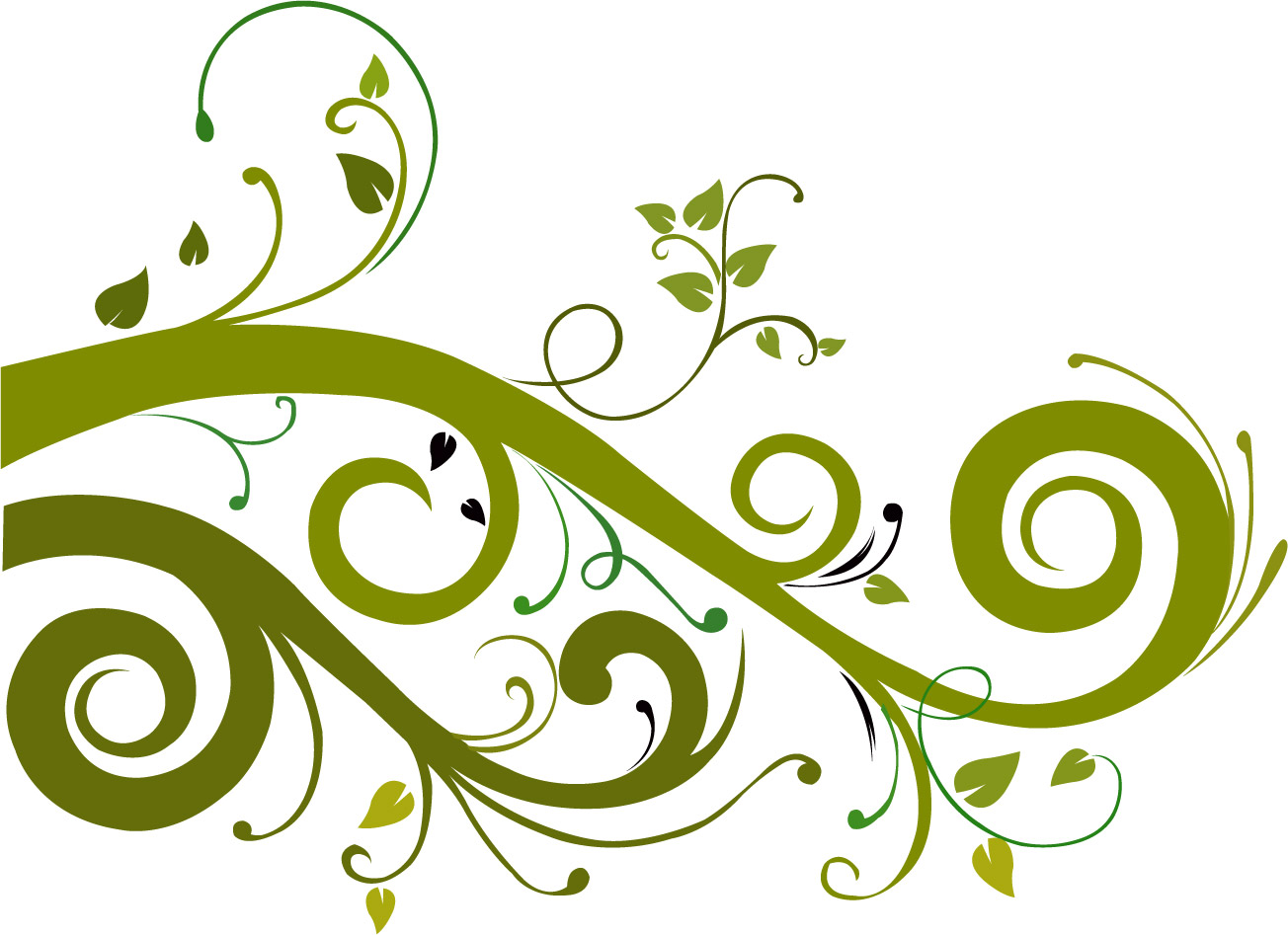 Flower Vector Graphic 7554 Hd Wallpapers in Vector n Designs - Floral PNG HD