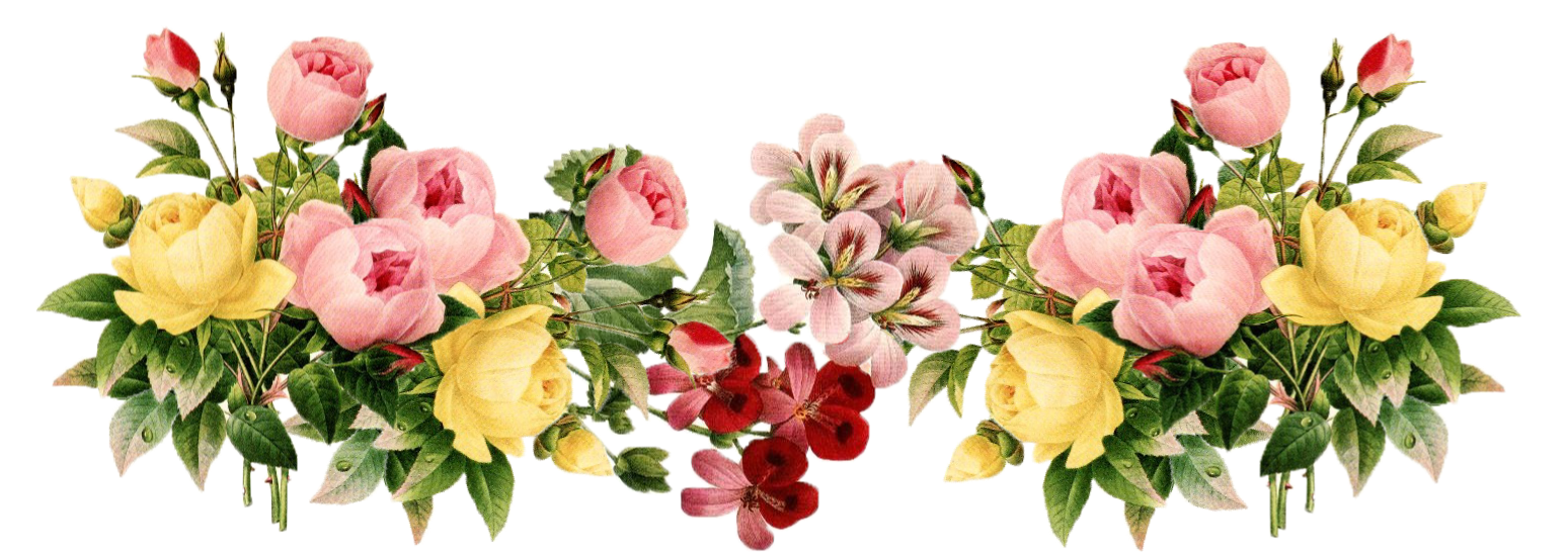 Floral PNG HD - 122162
