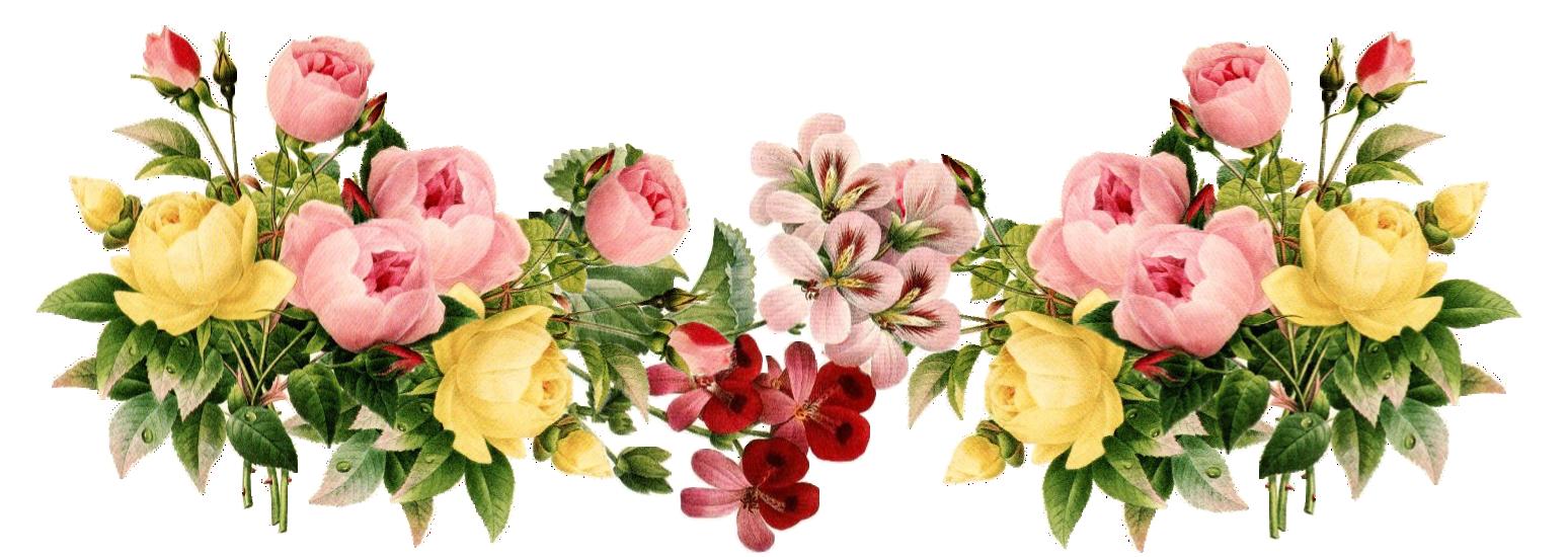 Jessica Hessler - Google  - Floral PNG HD