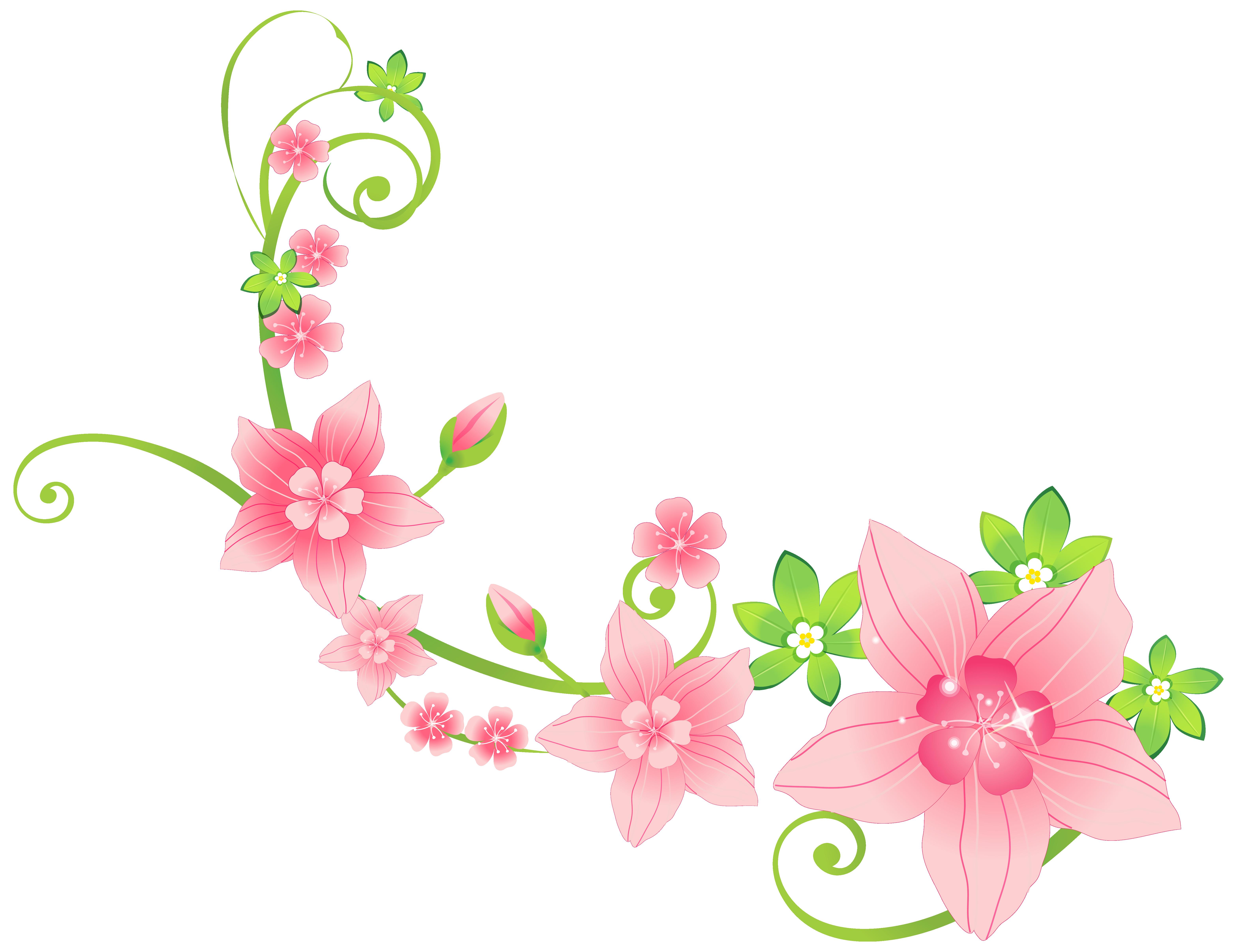 Floral Png Transparent Floralg Images Pluspng