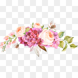 Pink Flowers - Floral PNG