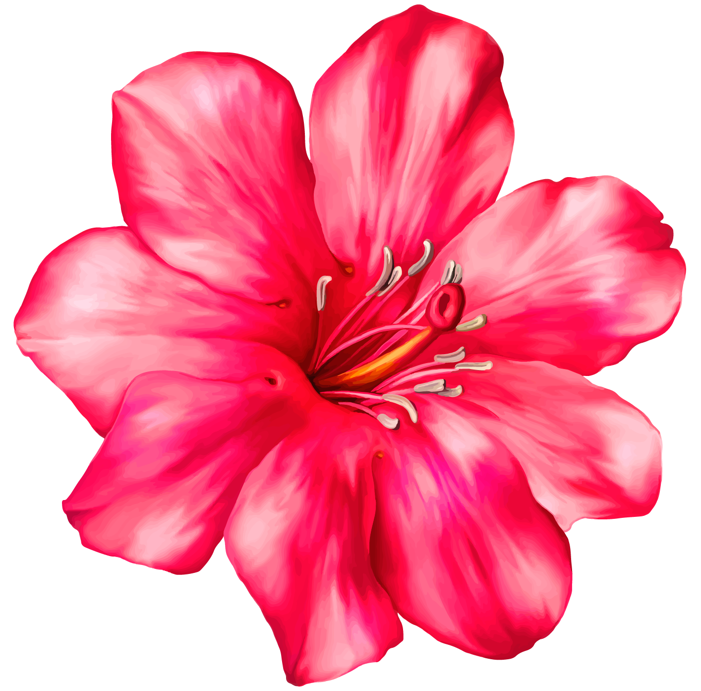 Exotic Pink Flower PNG Clipar