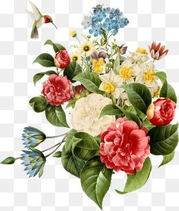 Flower - Flower PNG