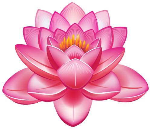 Lotus Flower PNG Clipart - Flower PNG Jpg