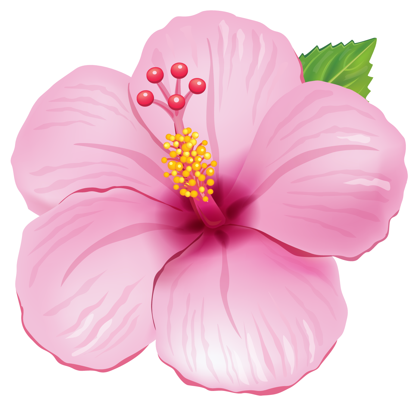 Pink Exotic Flower PNG Clipart Picture.png - Flower PNG