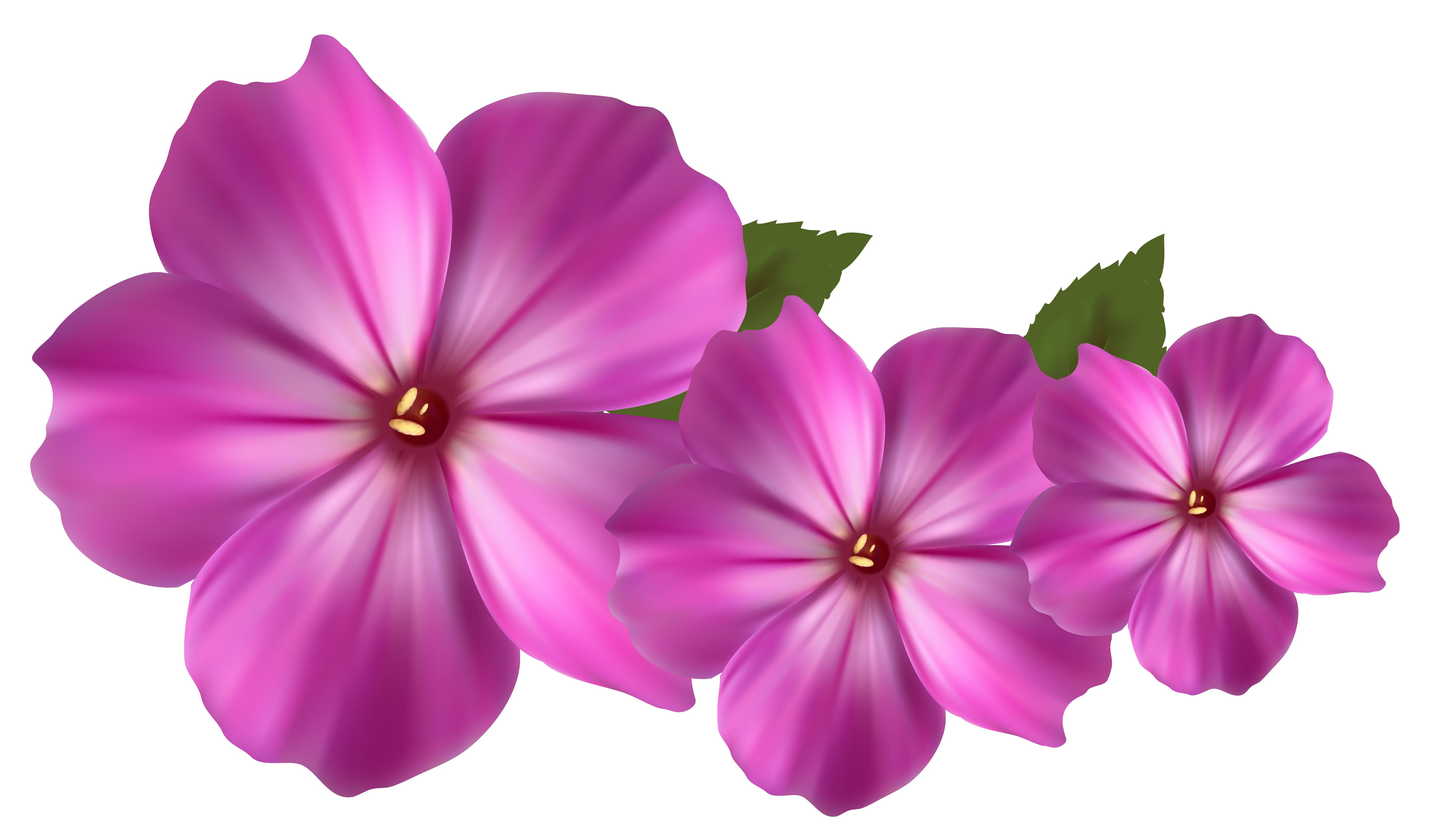 Pink Flower Decor PNG image #17941 - Flower PNG