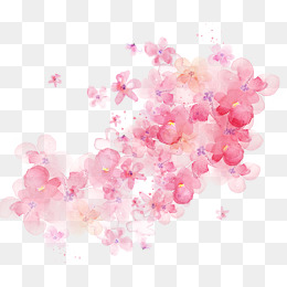 Watercolor Flowers Shading - Flower PNG