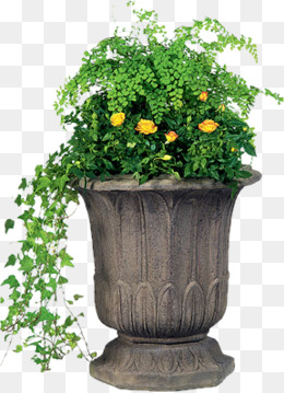 Ceramic flower pots, Small Fresh, Ceramic Pots, Flower Pot PNG Image - Flower Pot PNG
