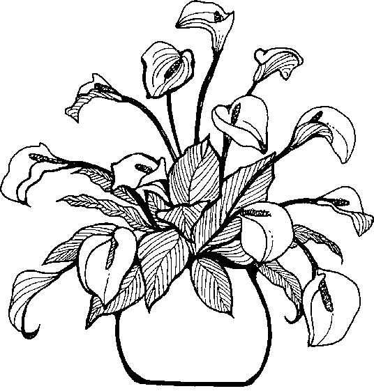 Clipart Info - Flower Vase PNG Black And White