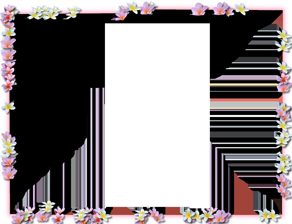 Flowers Borders PNG - 15486