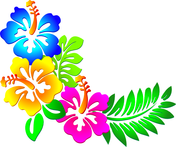 Flowers Borders PNG - 15483