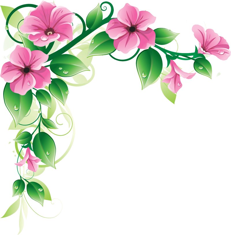 Flowers Borders Png 741 on Latest What To Write In A Condolence Card