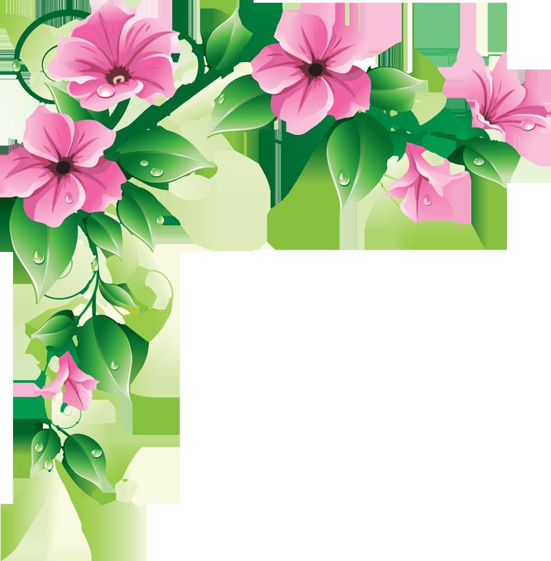 Flowers Borders PNG - 15467