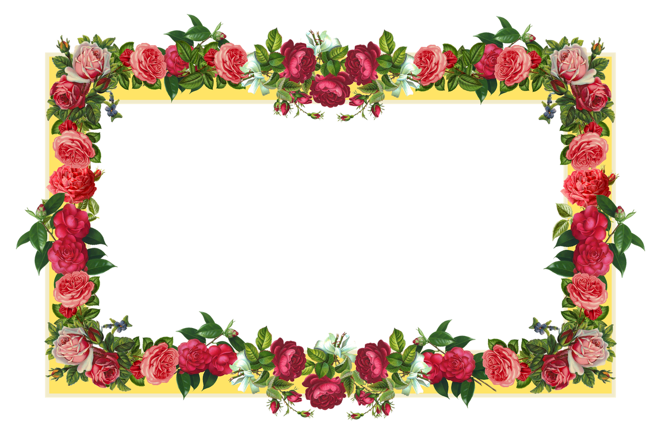 Download Flowers Borders PNG