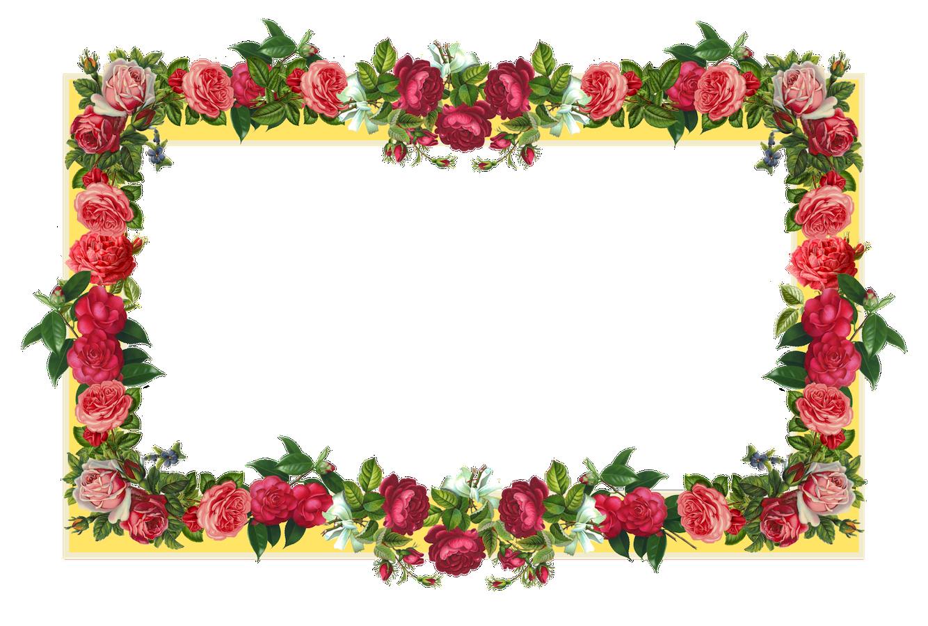 Flowers Borders PNG - 15468