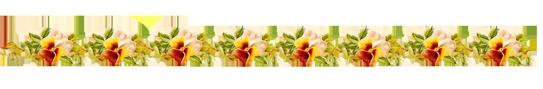 Flowers Borders PNG - 15474