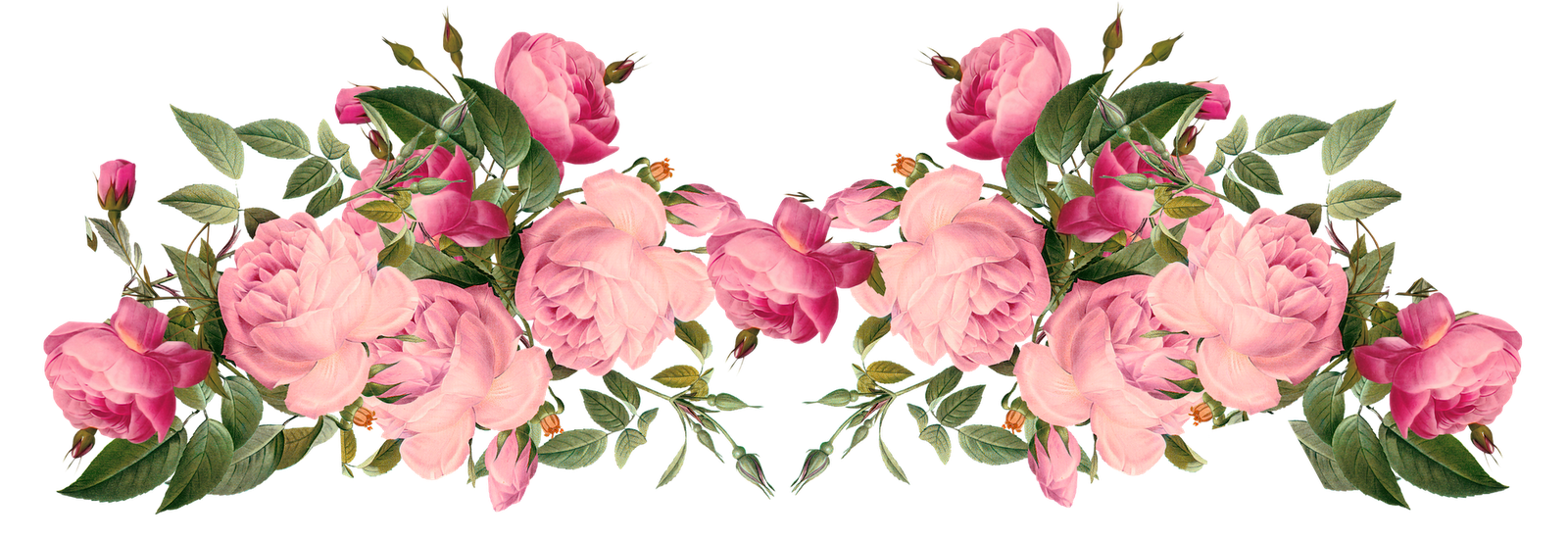 Flowers borders png transparent flowers bordersg images pluspng pink rose borders free pink roses border vintage style flowers borders png mightylinksfo