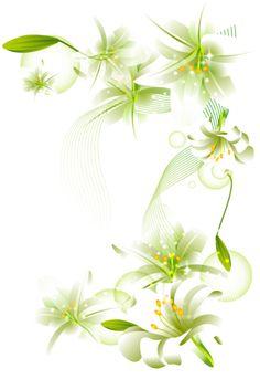 Flowers Borders PNG - 15487