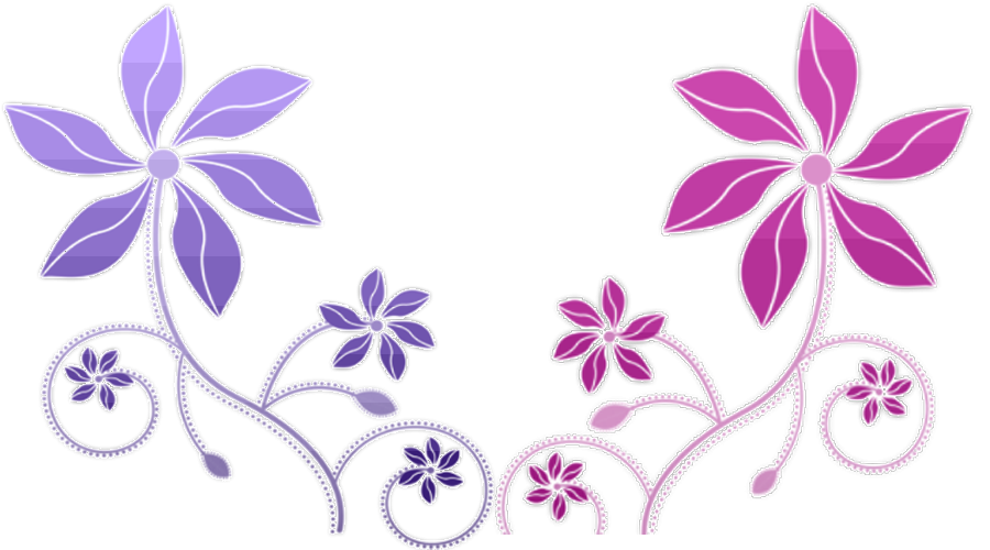 Colorful Flowers - Flowers Color PNG