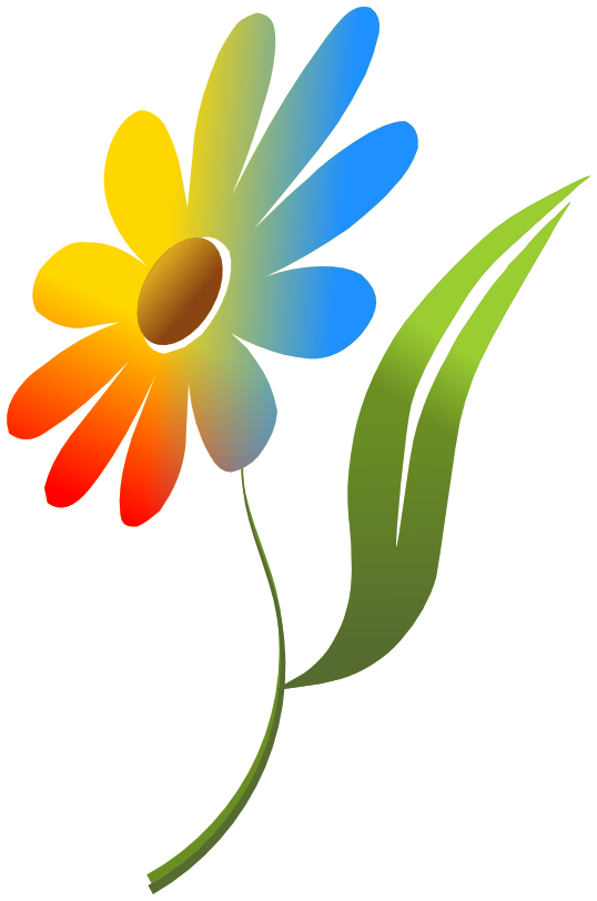 Flowers Color PNG - 17827